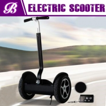 China electrical chariot of Four-Wheel Stand Up Scooter/Segway factory